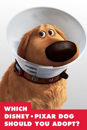OMD Slider - Which Disney • Pixar Dog Should You Adopt?