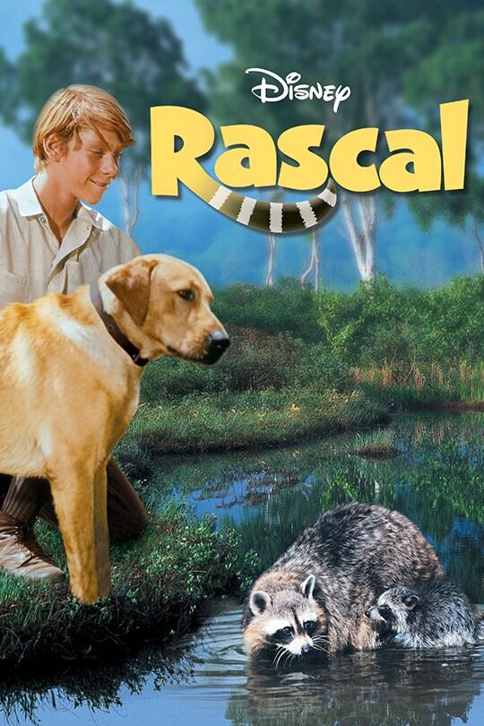Rascal Movie poster