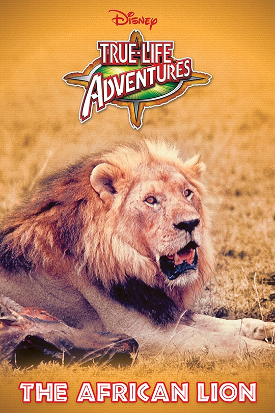 True-Life Adventures: The African Lion poster
