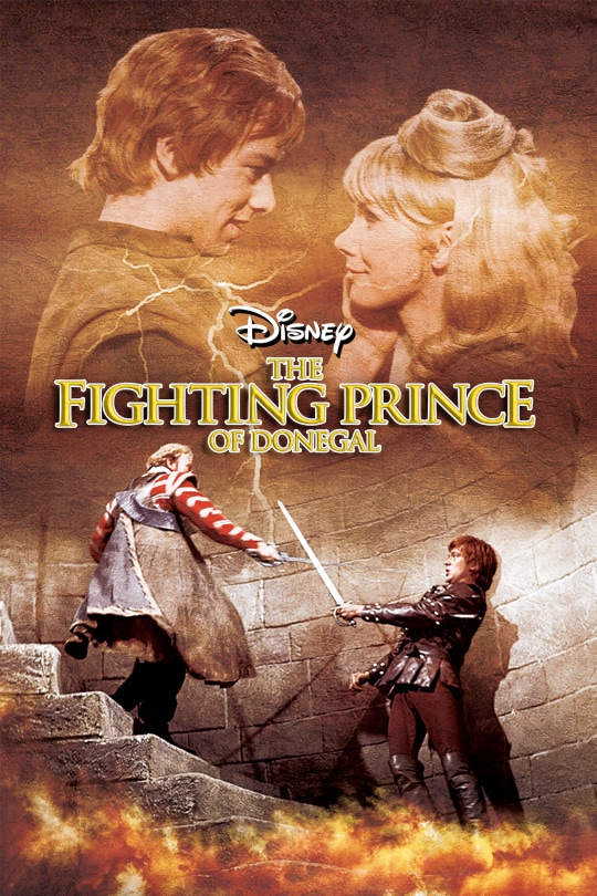 The Fighting Prince Of Donegal poster