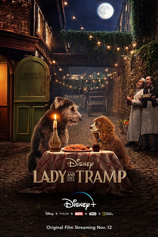 Lady and the Tramp - poster image