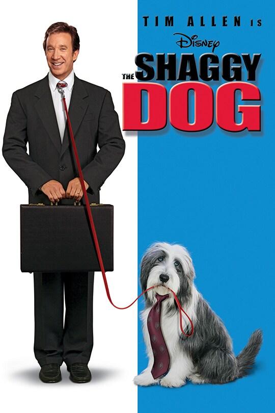 Disney | Tim Allen in The Shaggy Dog | movie poster