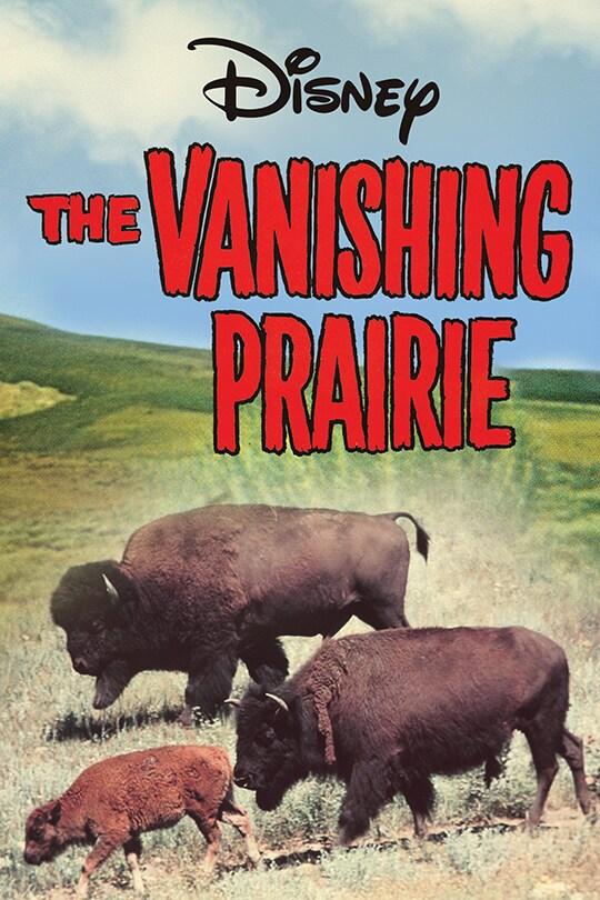 Disney The Vanishing Prairie movie poster