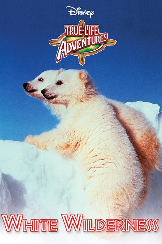 Disney True-Life Adventures White Wilderness movie poster