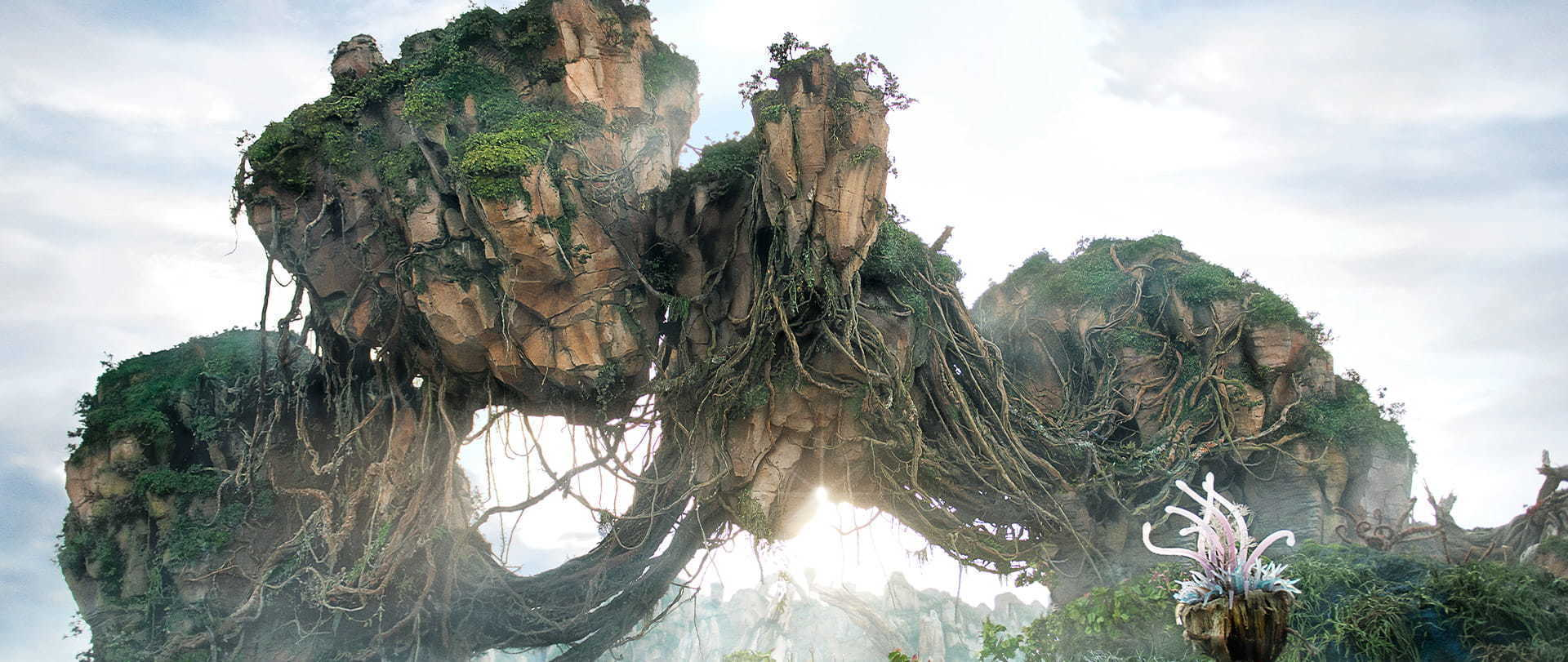 Pandora - The World of Avatar   Experiences
