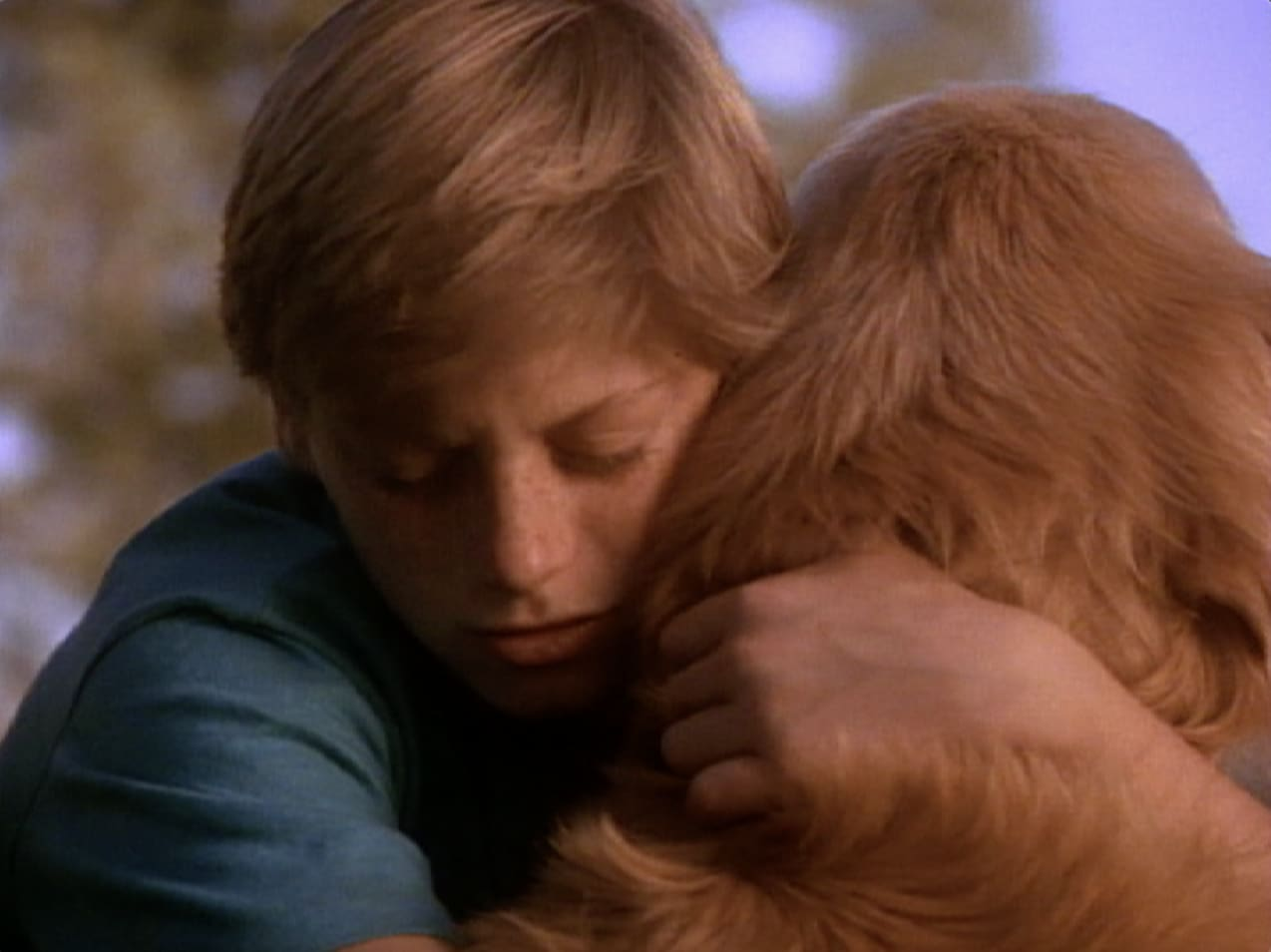 Peter Hugs Shadow in Homeward Bound