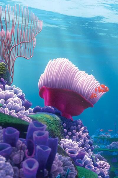 Activité La plongée sous-marine
