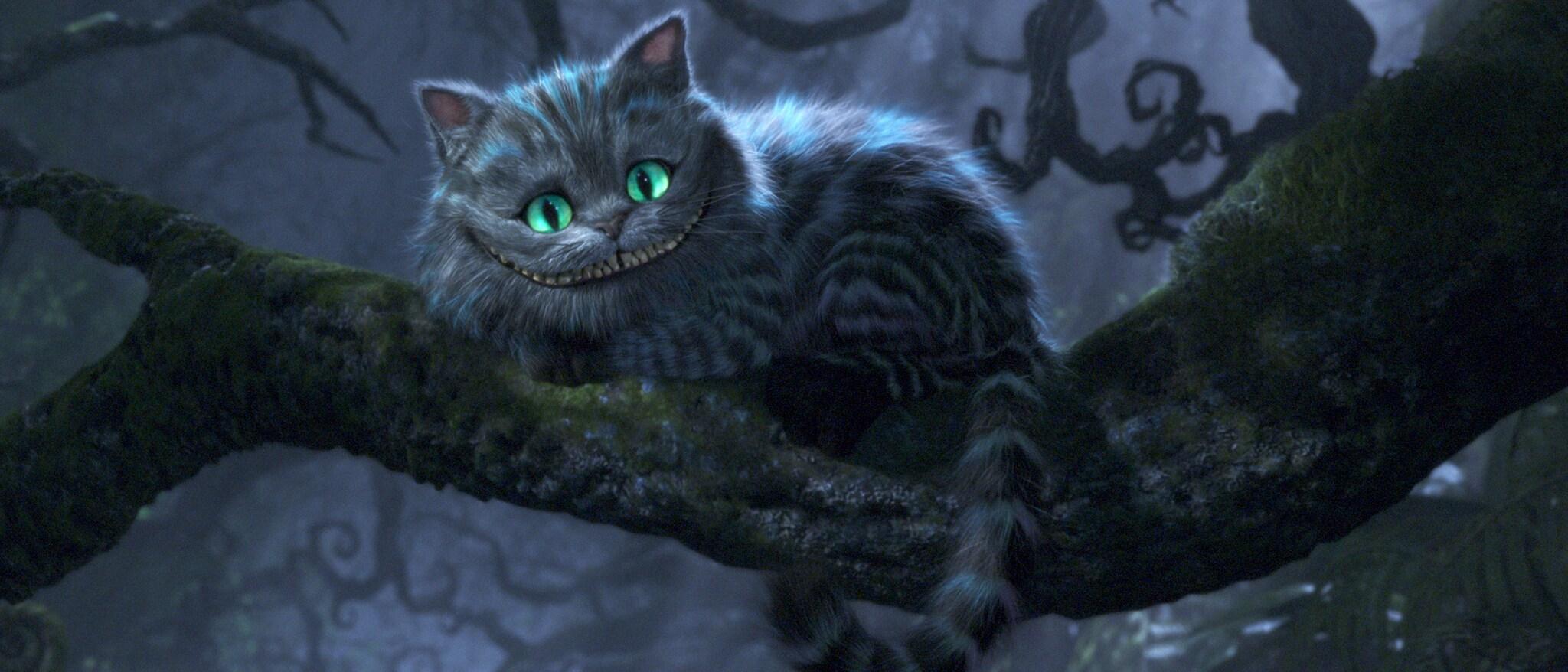 Alice in Wonderland (2010) Hero