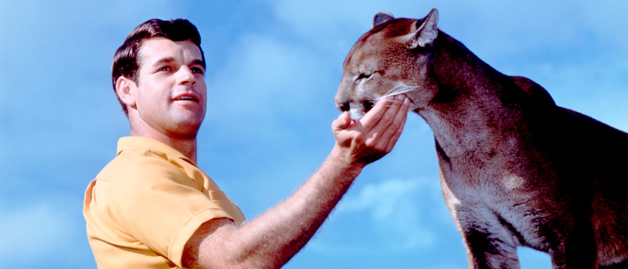 Charlie, the Lonesome Cougar Hero