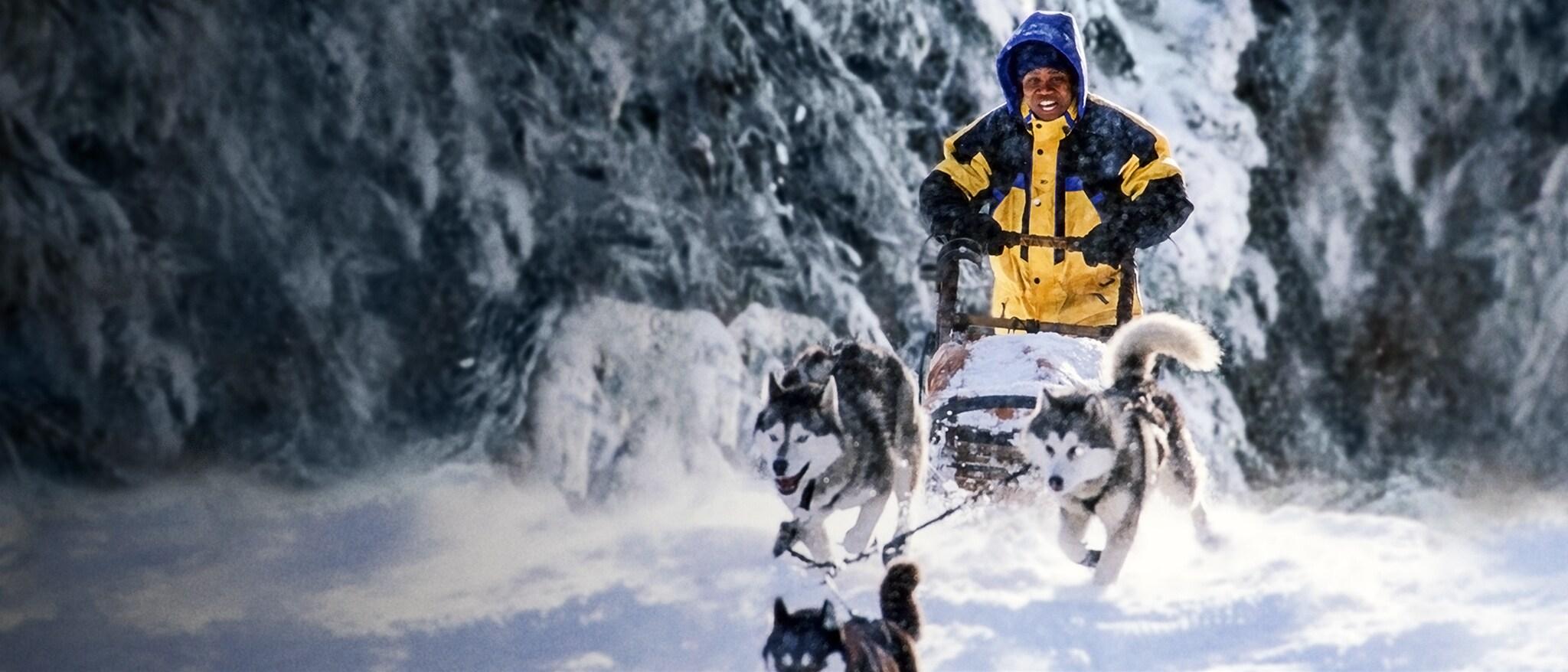 Snow Dogs Hero