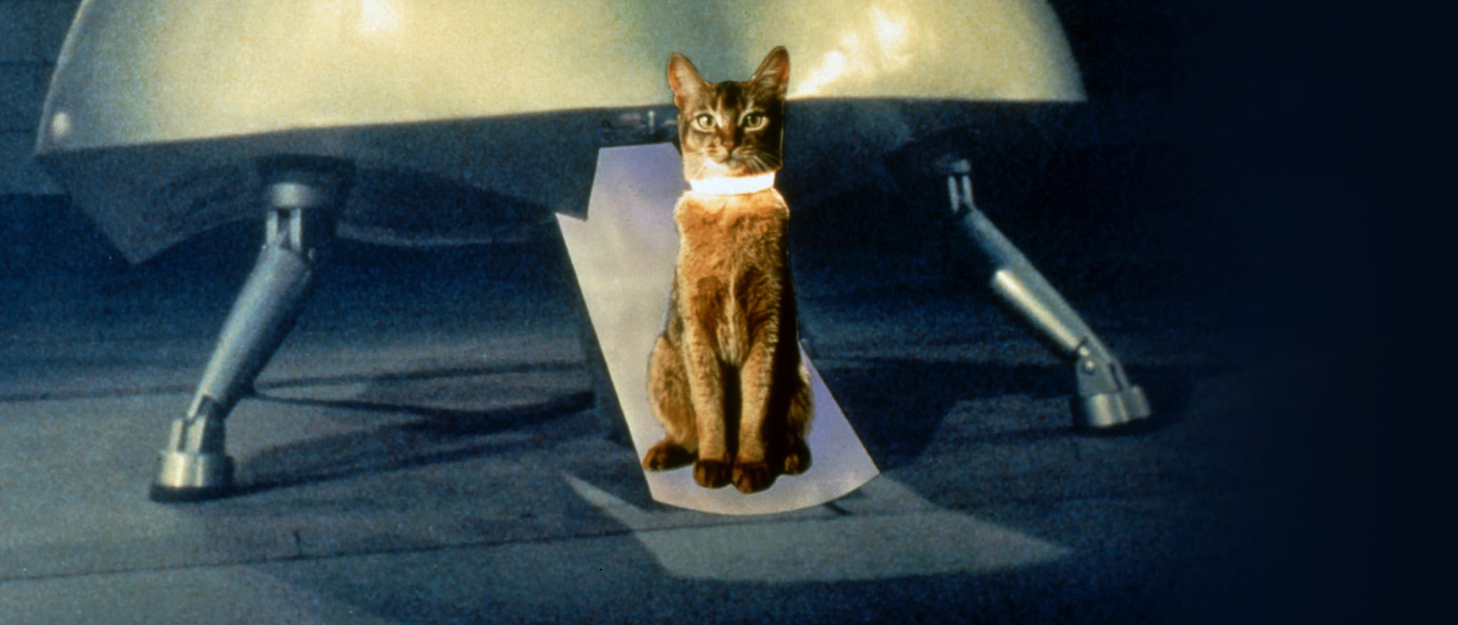 The Cat from Outer Space Hero