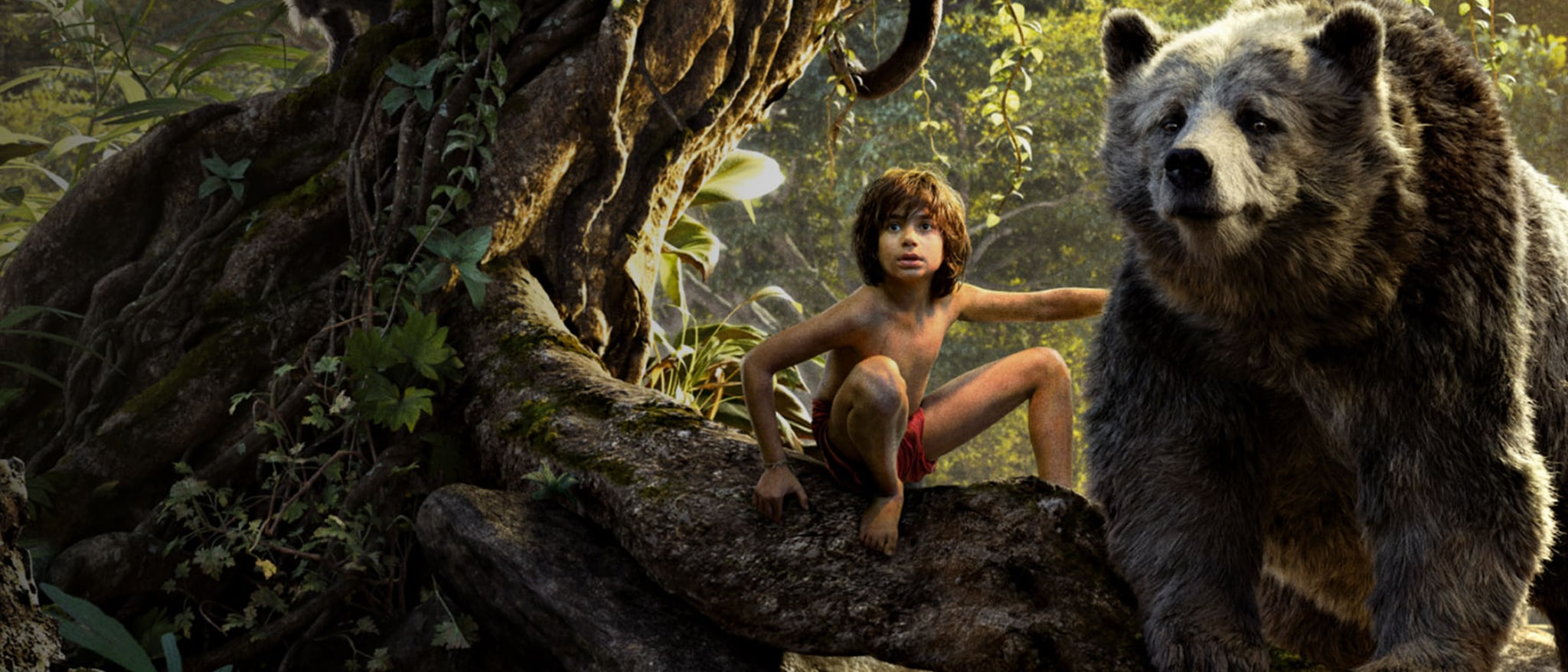 The Jungle Book Hero