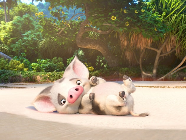 Pua is Moana's loyal pet pig with puppy energy and an innocent puppy brain.