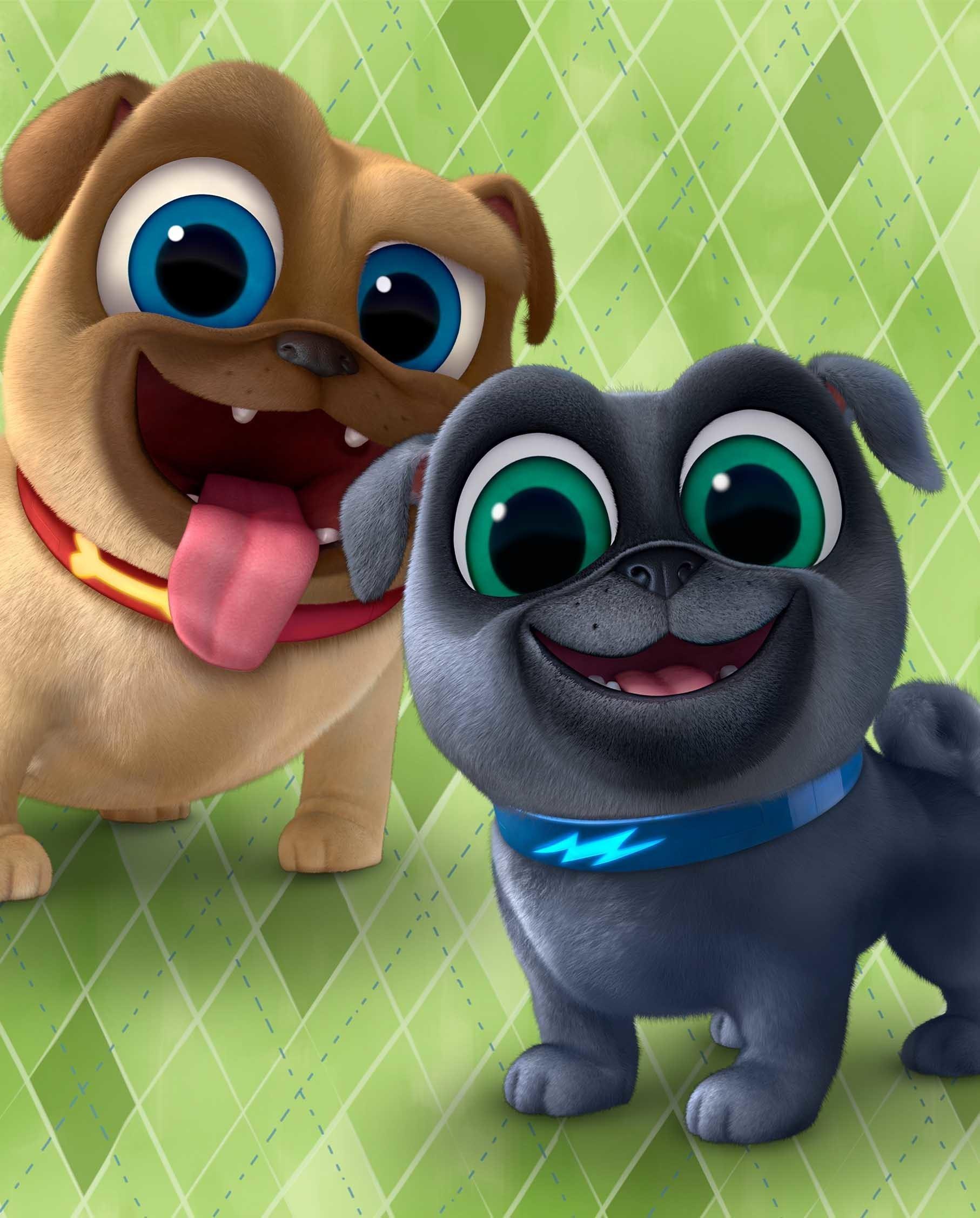 Puppy Dog Pals   TV