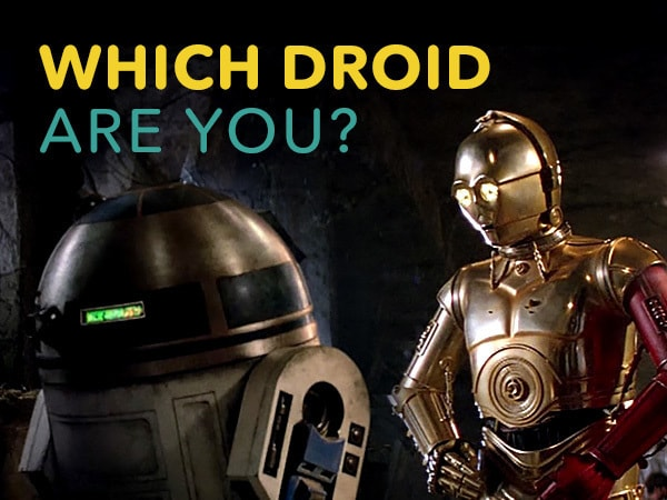 Which Droid Are You?