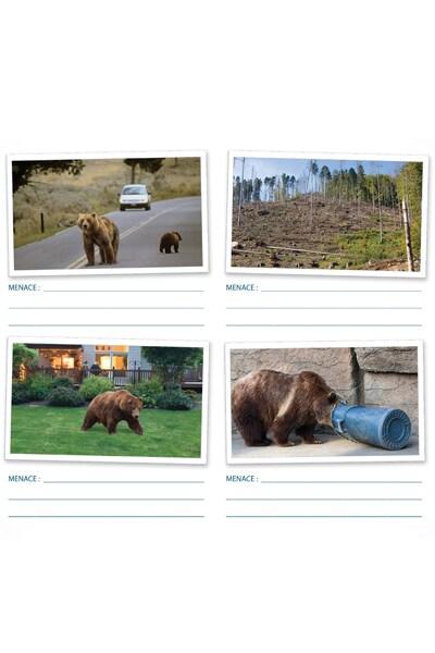 Qu'est-ce qui menace les ours bruns ? - Grizzly