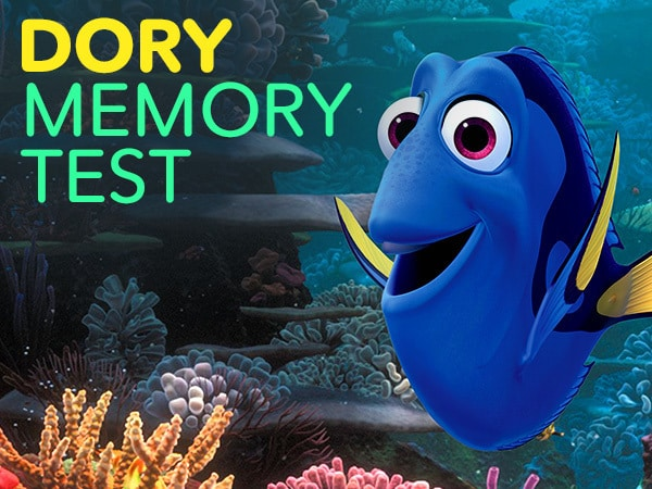 Put Your Dory Memory To The Test!