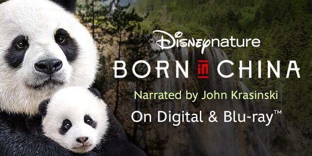 متولد چین (مستند)