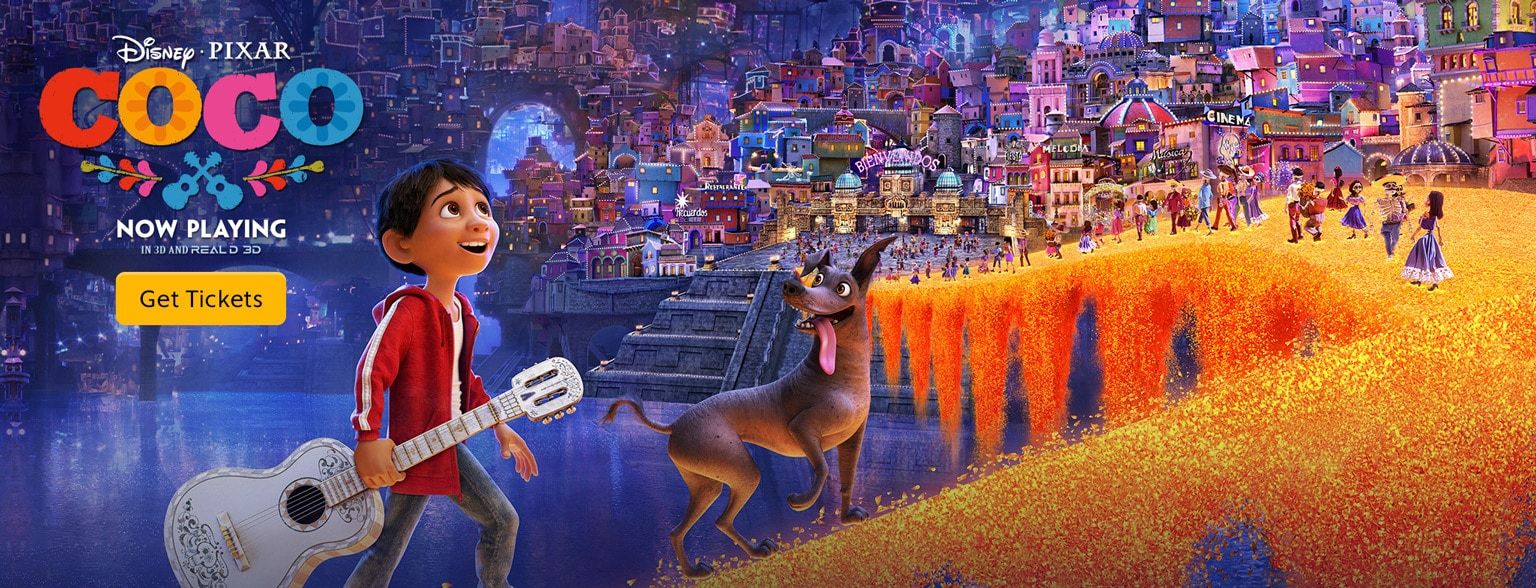 Image result for coco disney