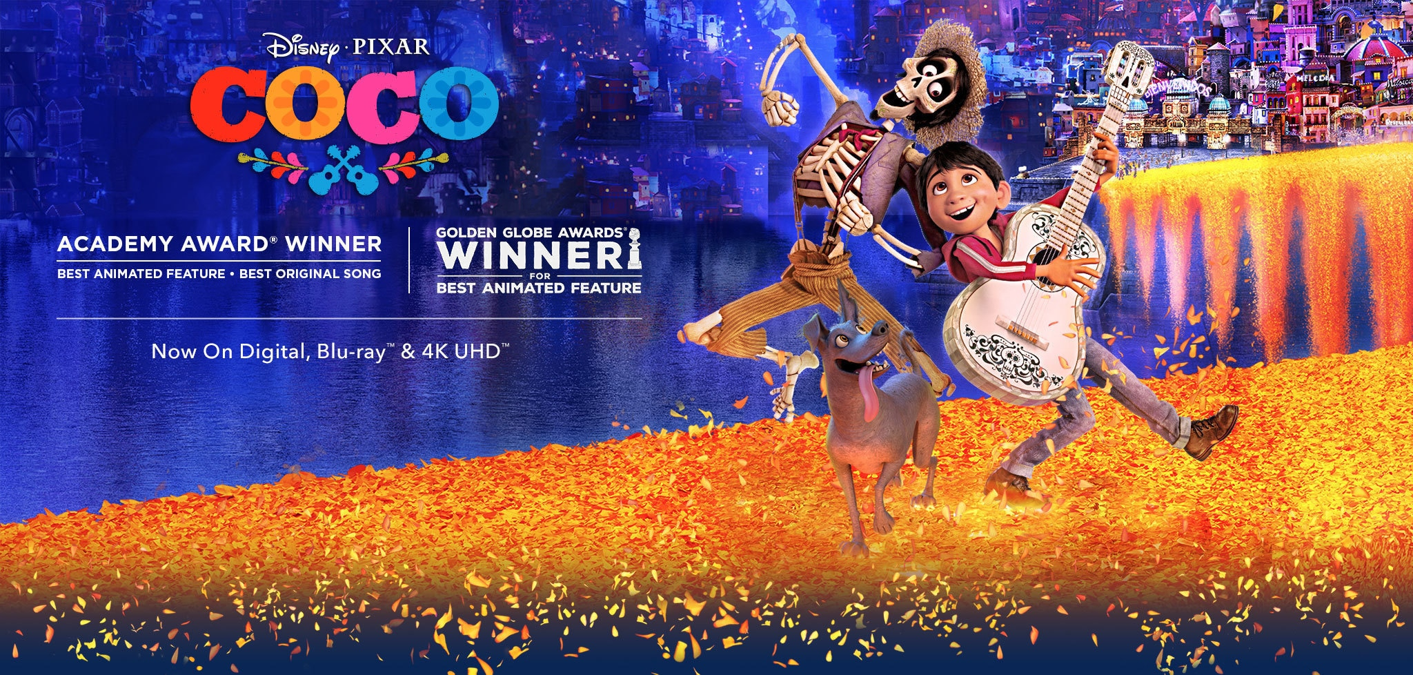 Disney Pixar Coco Now On Blu Ray And Digital New On K Uhd