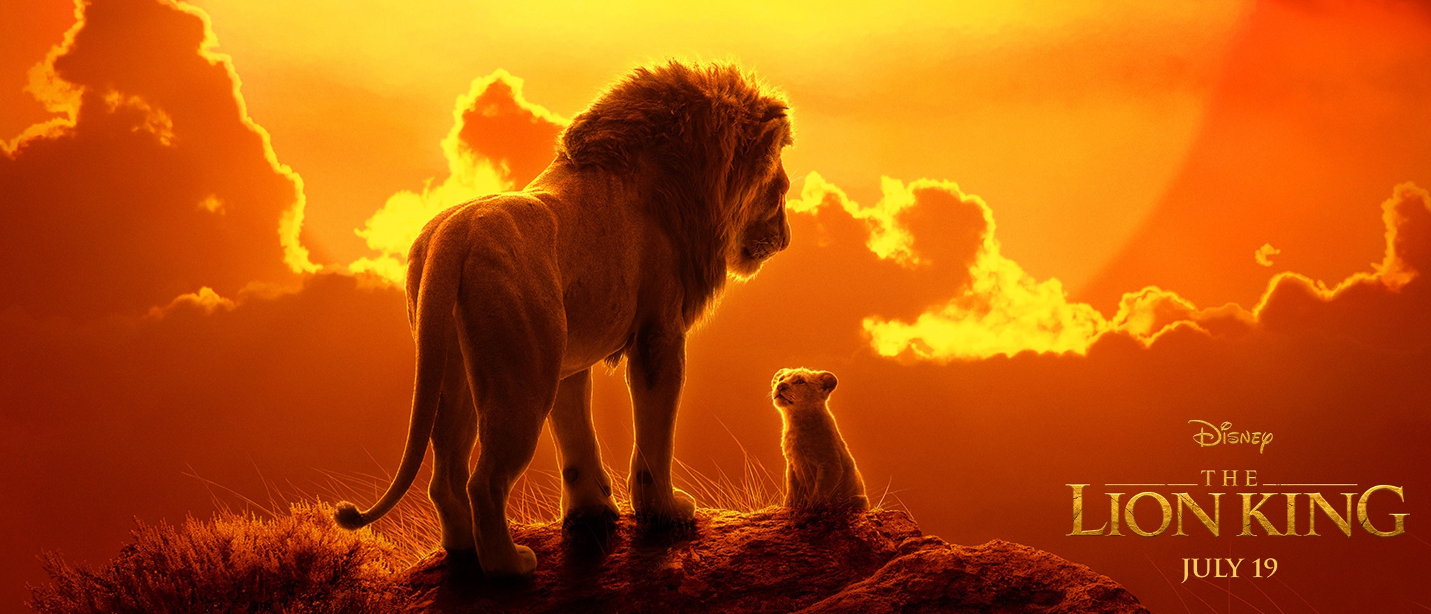 Image result for lion king 2019