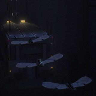 Loth-bat glider