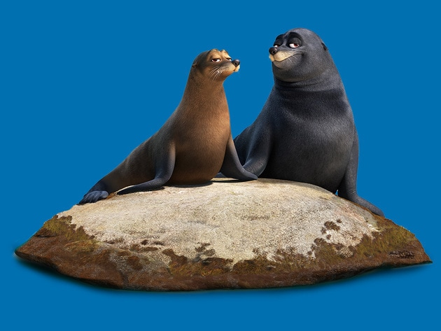 Fluke and Rudder are a pair of lazy sea lions who were rehabilitated at the Marine Life Institute...