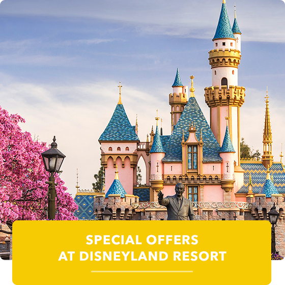DLR Special Offers