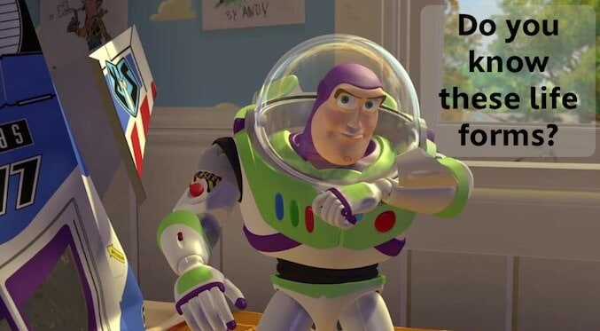 """Buzz Lightyear saying: """"Do you know these life forms?"""""""