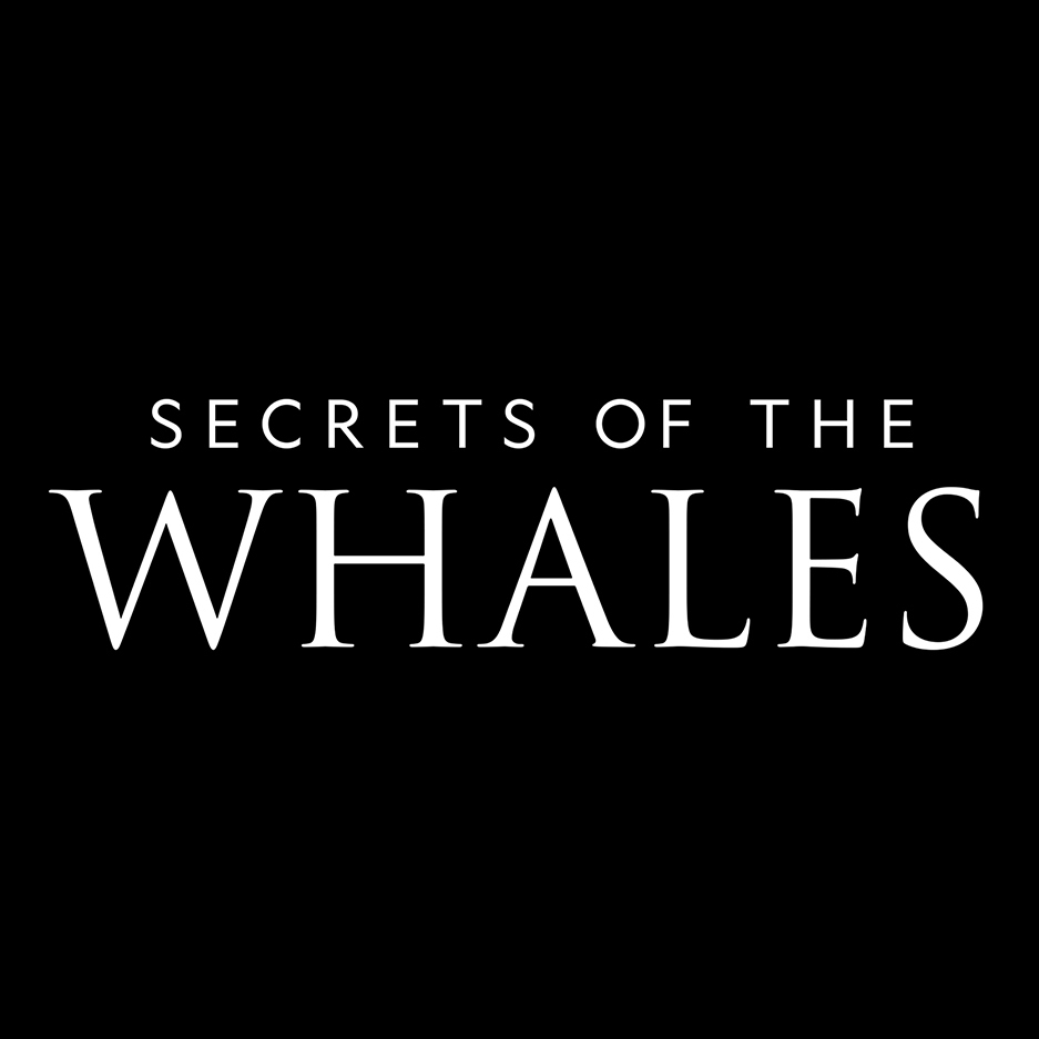 Disney+ reveals The Mysterious and Beautiful World of Whales in newly released trailer for its original series 'Secrets of the Whales'