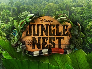 Jungle Nest
