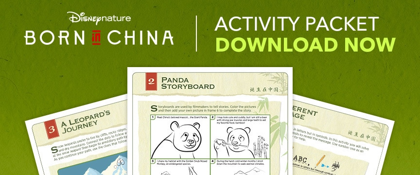 Born In China Activity Guide