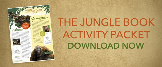 The Jungle Book - Activity Pack