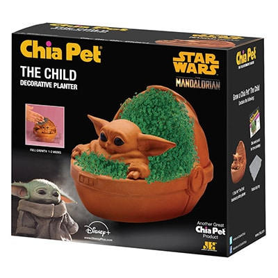 The Child Chia Pet with Stand