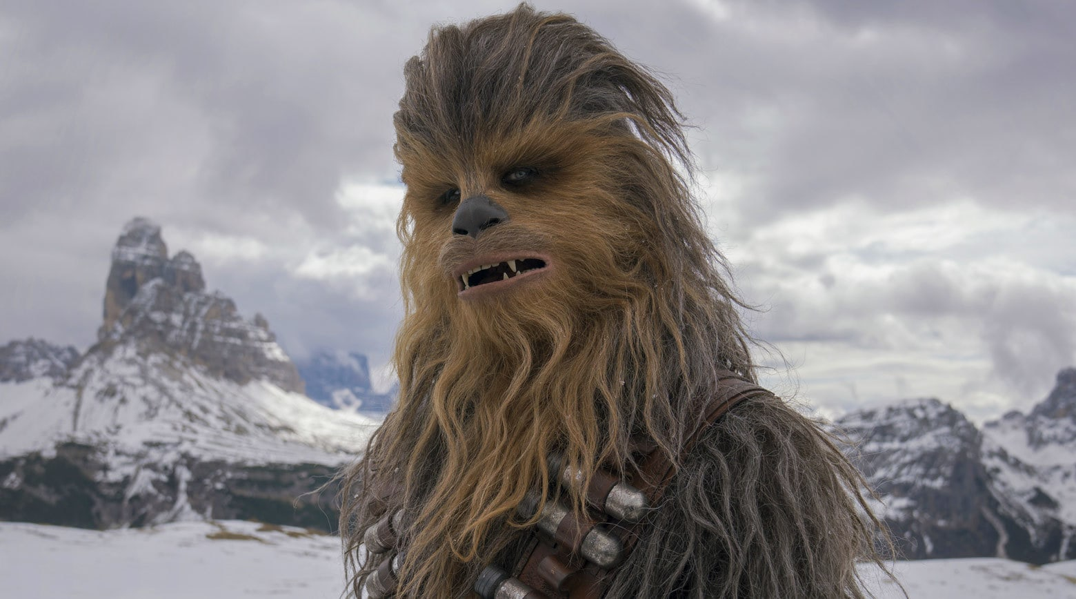 solo-chewbacca-main_80768fa8.jpeg