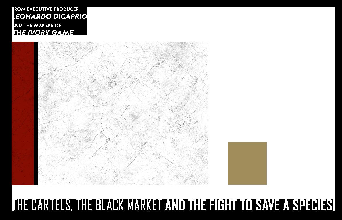 Sea of Shadows - Hero - Film Site (No Gradient)