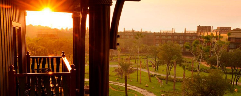 Echa un vistazo a estos amaneceres desde Walt Disney World Resort