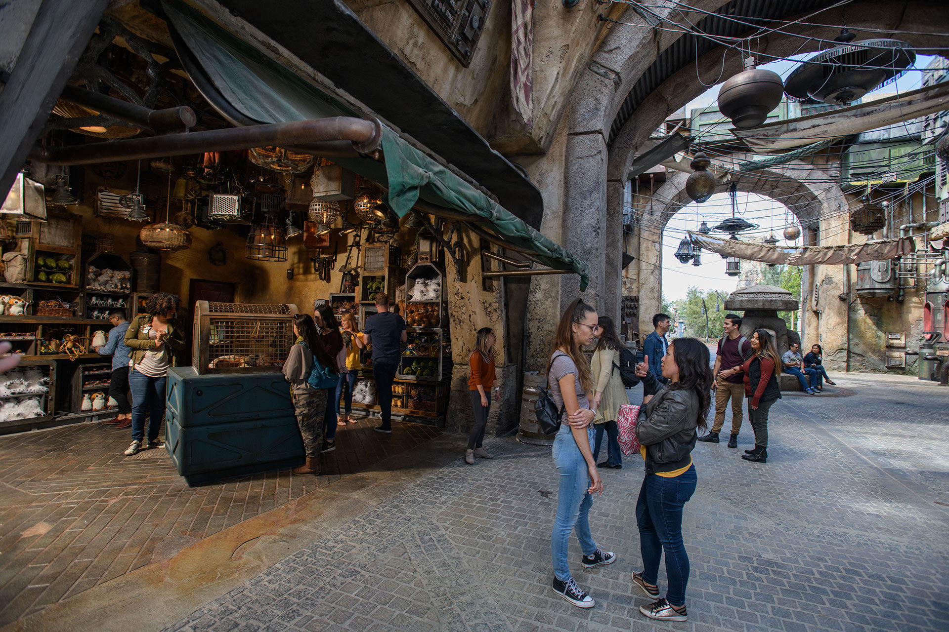 Nine different retail locations in the lands offer nearly 700 unique items, ideal for those looking to take a memory of Star Wars: Galaxy's Edge home with them.