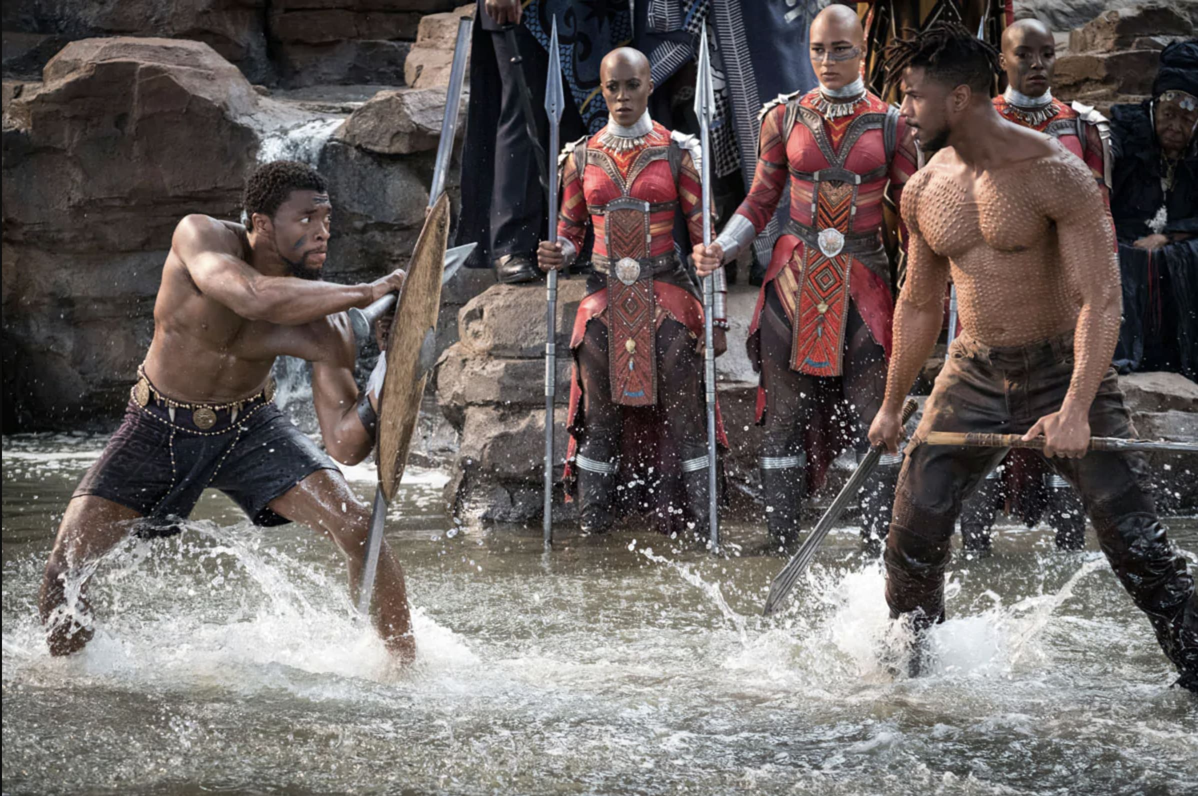 T'Challa and Killmonger Battling in Black Panther
