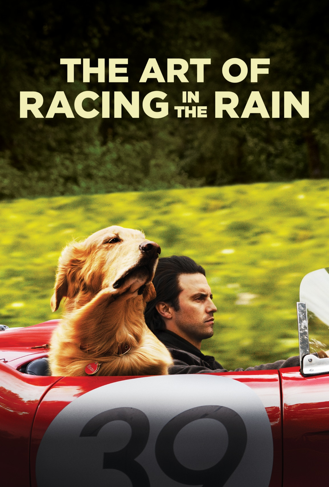 The Art of Racing in the Rain (2020)