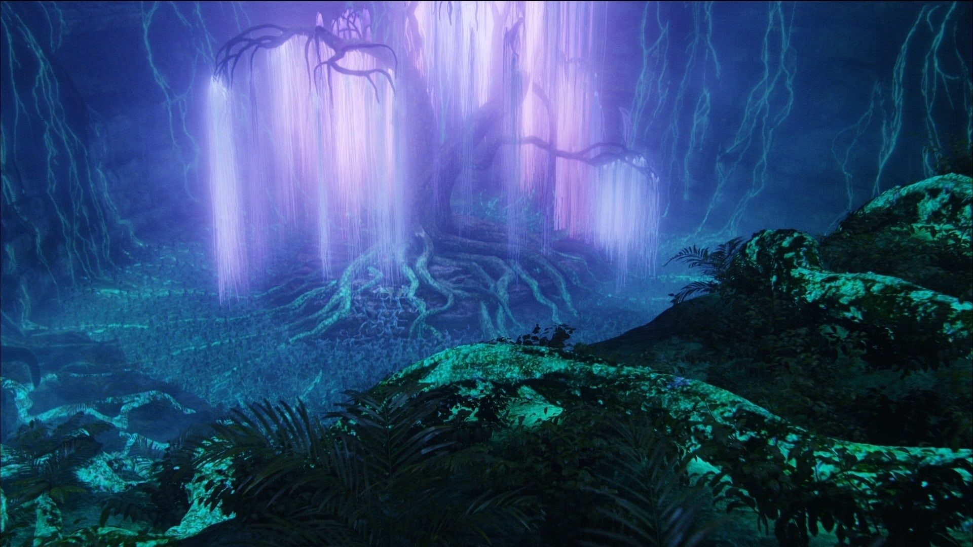 The Willow Glade, at night, the Tree of Souls shines brightly.