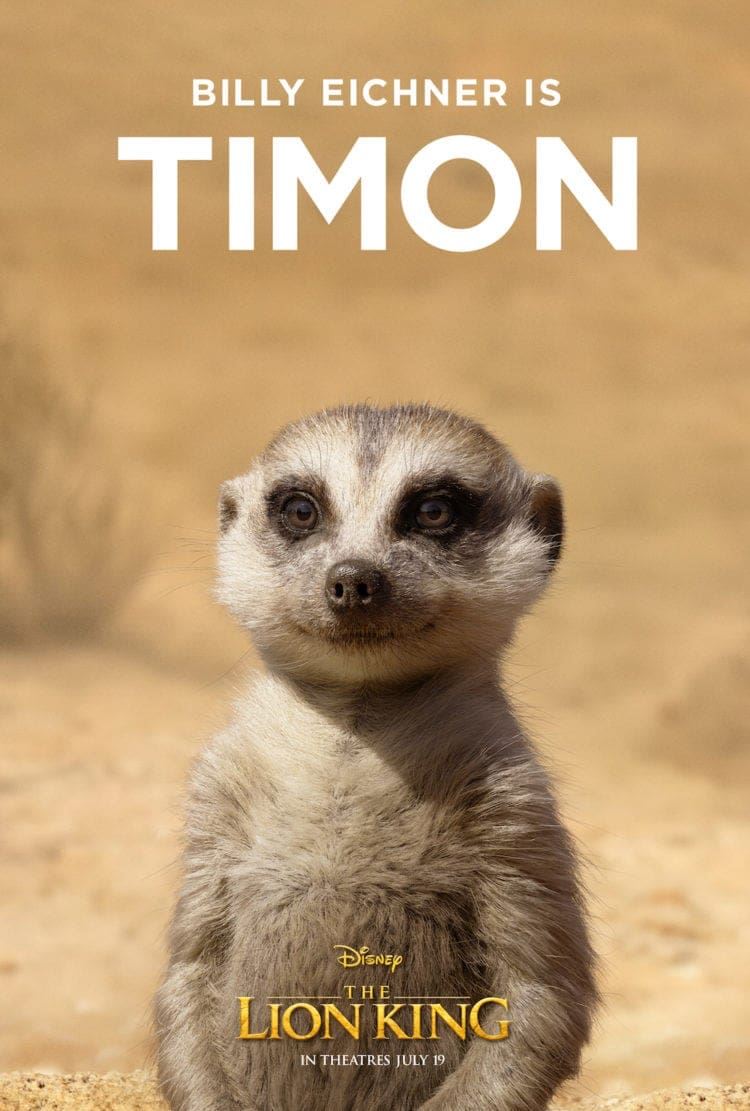 Poster-Billy Eichner is Timon. Disney The Lion King in Theatres July 19