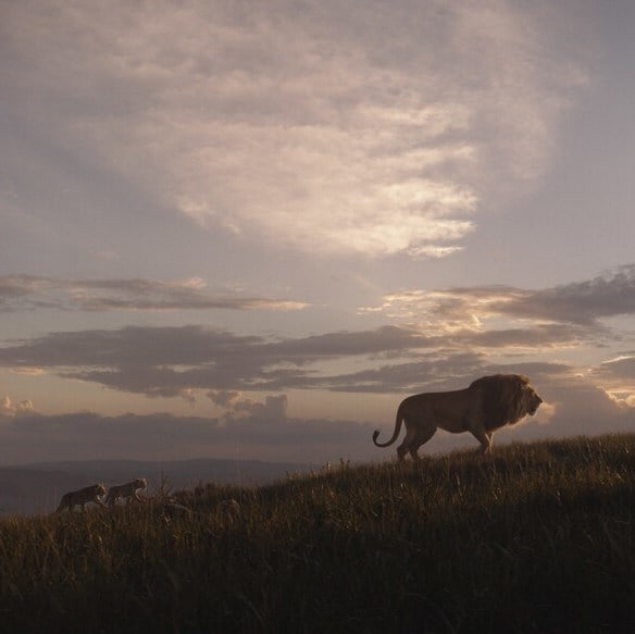 7 Things You Didn't Know about the Making of The Lion King