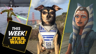 Cute Star Wars Pets, New Updates to Galaxy of Heroes, and More!