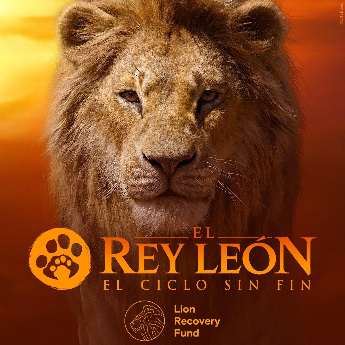 Disney invita a fans a participar de la campaña solidaria #ElCicloSinFin para celebrar el estreno de El Rey León