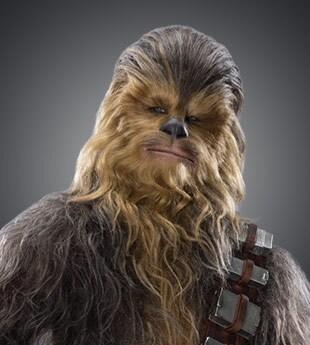 chewbacca star wars shopdisney