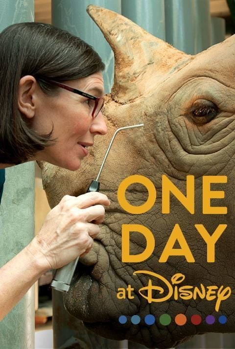 Disney Plus - One day at Disney - Poster