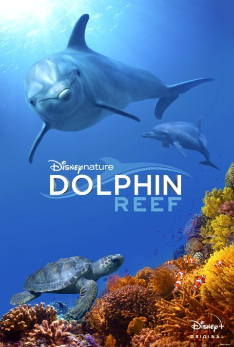 Disney Plus - Dolphin Reef - Poster
