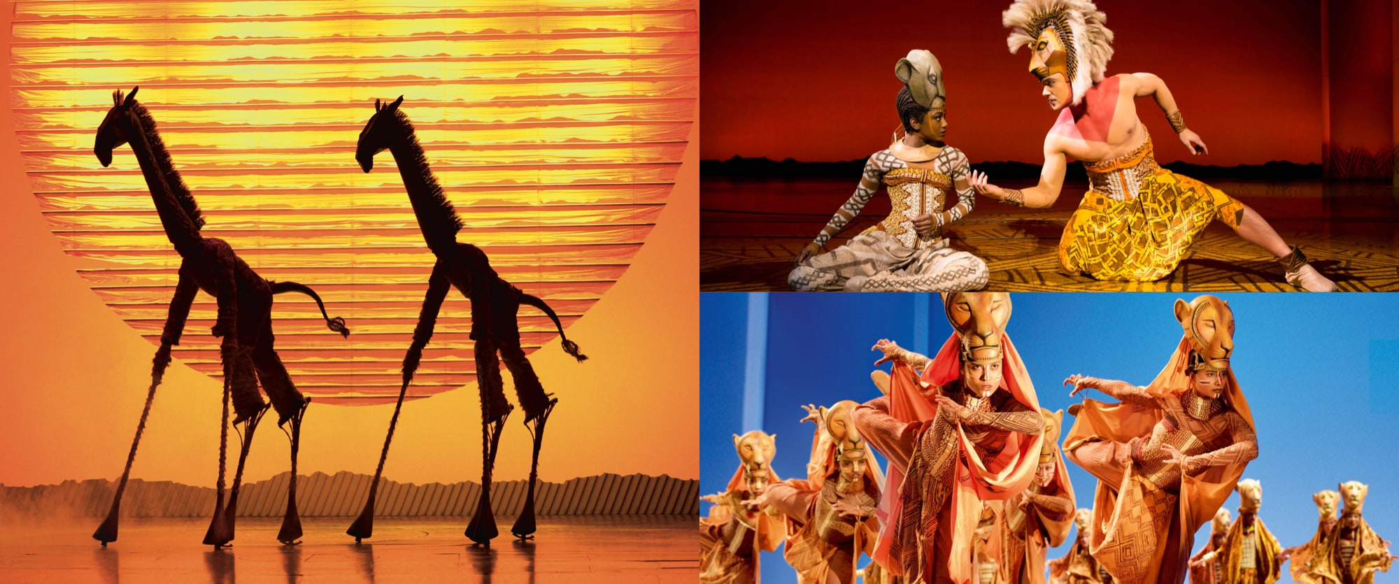 Stills from The Lion King stage show featuring giraffes, Simba, Nala and the Lionesses hunt