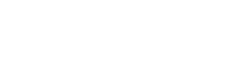 Disney's The Lion King Musical logo